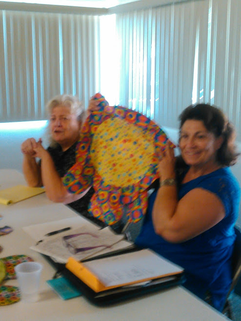THE TURTLE PILLOW PROJECT